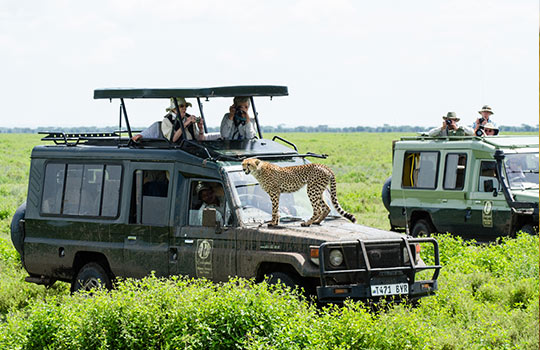 group-join-tours-africa